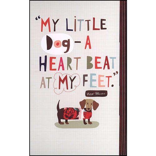 So true #Cute pet #pet boy