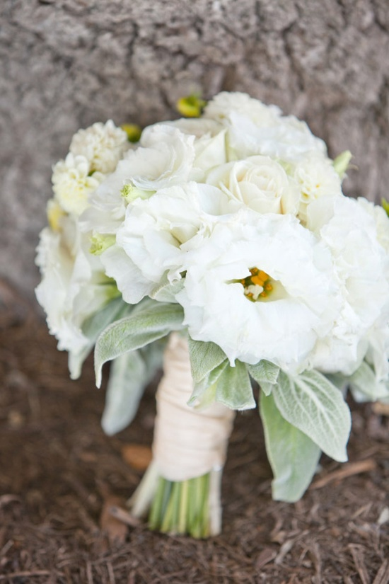 all white bouquet  Photography by joshgruetzmacher.com, Floral Design by grassrootssantaba...