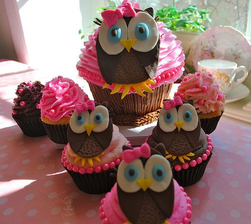 Girly Owl Cupcakes