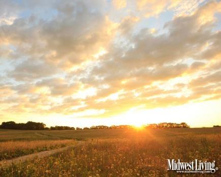 Midewin National Tallgrass Prairie in Wilmington, Illinois. Part of our new Illinois-only desktop download collection! @Enjoy Illinois