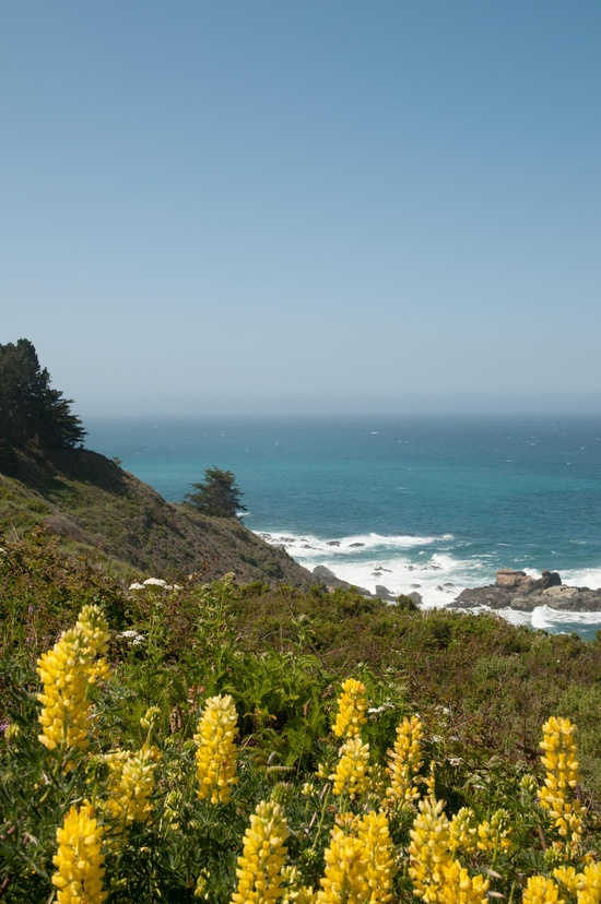 Highway 1 - California