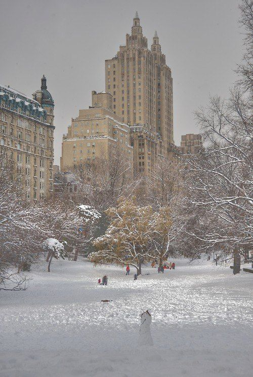 White Central Park. One of my favorite memories..... Woke very early one morning to unexpected snow.  Never forget how quite the city was. Could literally hear the snow falling!!