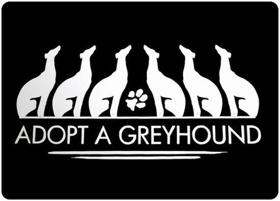 Adopt a greyhound.  Or seven  ;)