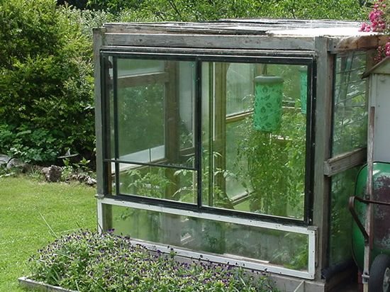 Build a greenhouse out of old windows!