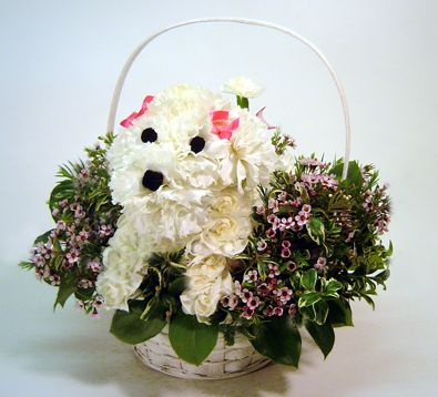 All I want is flowers that look like a puppy.