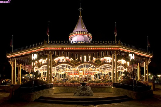 Want to go on Cinderella's Golden Carousel