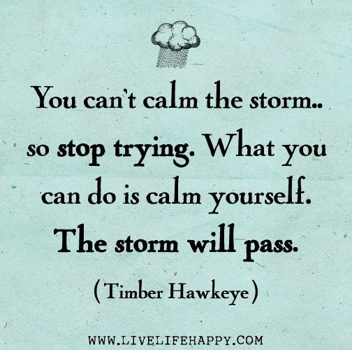 You can't calm the storm... so stop trying. What you can do is calm yourself. The storm will pass. -Timber Hawkeye by deeplifequotes, via Flickr
