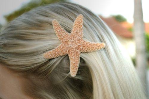 star fish (:
