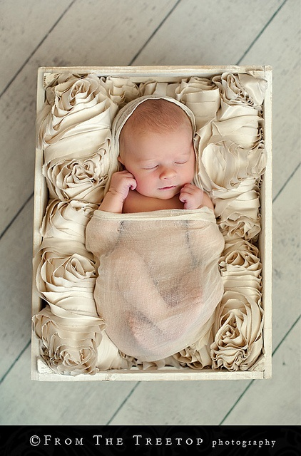 this newborn set-up is gorgeous! wow. love.