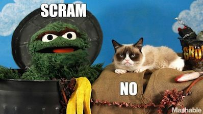 Oscar the Grouch and Grumpy Cat battle it out! on.mash.to/1j2Ah0E #funny #lolcats