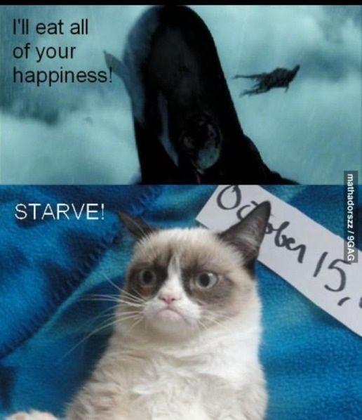Grumpy cat vs dementors