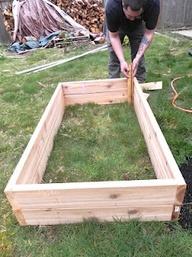Building a raised garden bed!