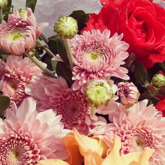 Flowers ...