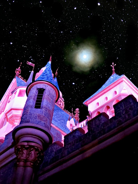 Castle and the Moon on Flickr.