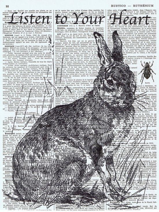 Bunny on print