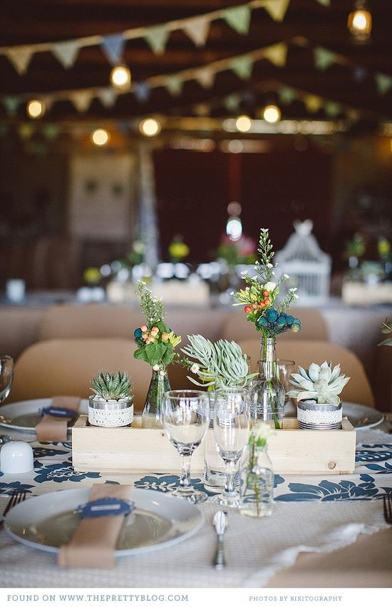 Succulents for table flowers