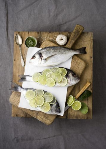 Fish Food Styling
