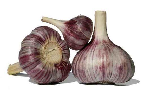 Health benefits of Garlic Plus Delicious Recipes