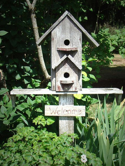 Love this birdhouse