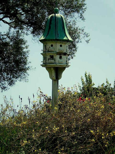 want this birdhouse