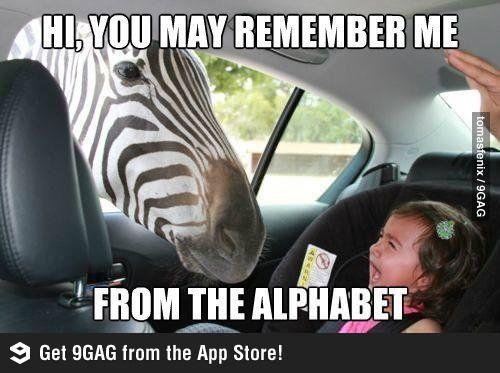 Hello, this is Zebra