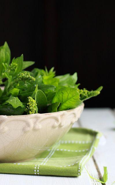 Fresh Spinach from My Garden by Cintamani ;-), via Flickr