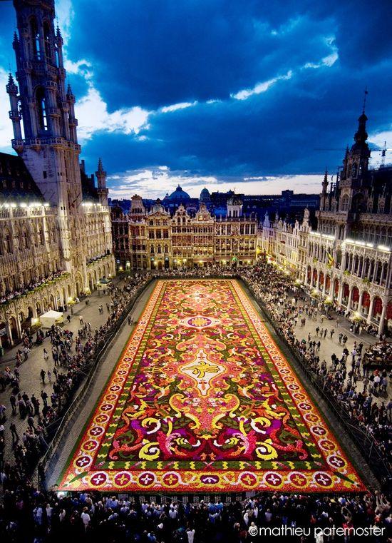 The Carpet of Flowers in Brussels, Belguim. WOW. need to go to belguim