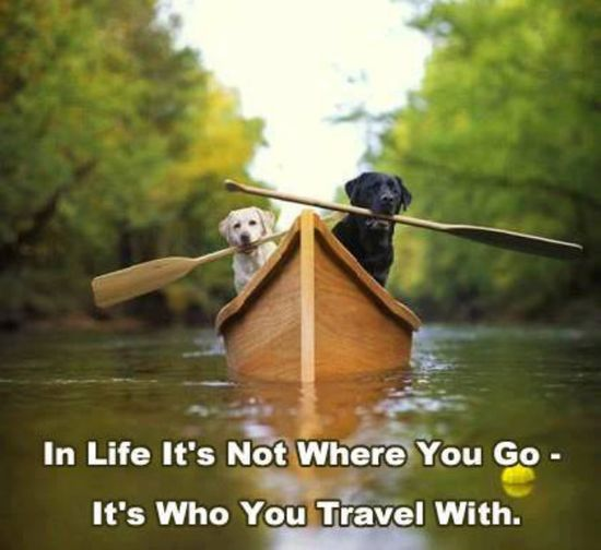 It's who you travel with.