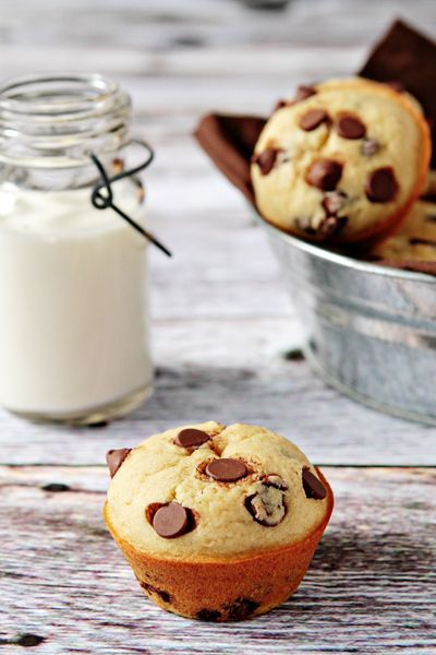 Chocolate-Chip-Muffins great recipes! Go check it out!