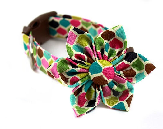 Sweetwater Candy....Dog Collar and Flower Set