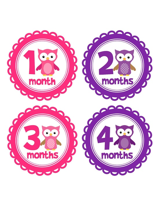 Baby Girl Monthly Onesie Stickers with Pink and Purple Owls...Makes a Great Baby Shower Gift. $9.00, via Etsy.