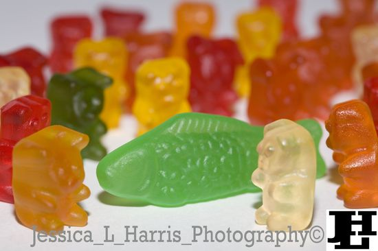 Gummie Bear Attack! lol #funny #food #photography #candy ok I'm done.