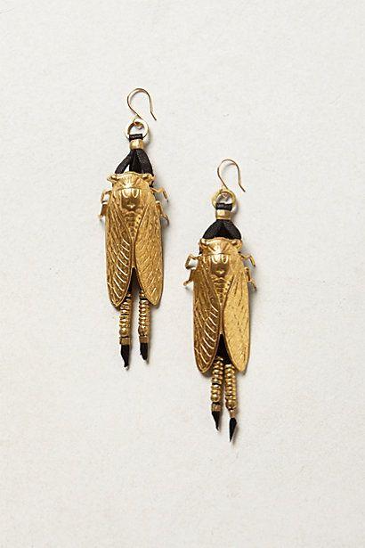 cicada earrings.