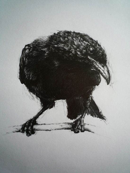 """Saatchi Online Artist: Vanessa Foley; Graphite, 2011, Drawing """"For Sorrow""""  WOW!"""