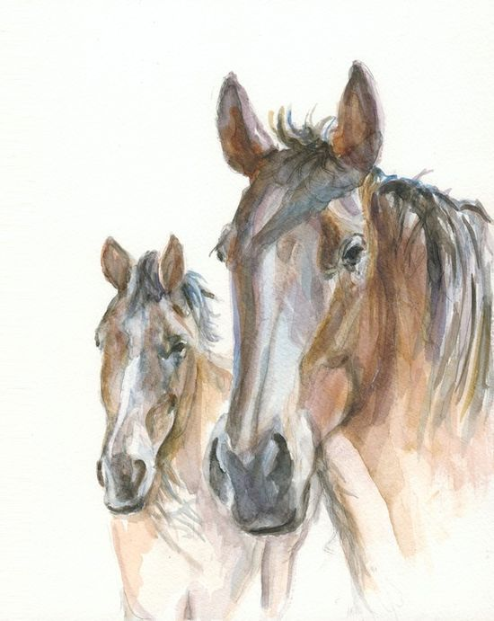 Horses watercolor painting - by illumino  $35.00