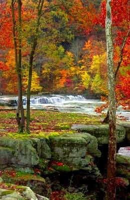 Vibrant Fall Foliage at Valley Falls State Park, West Virginia