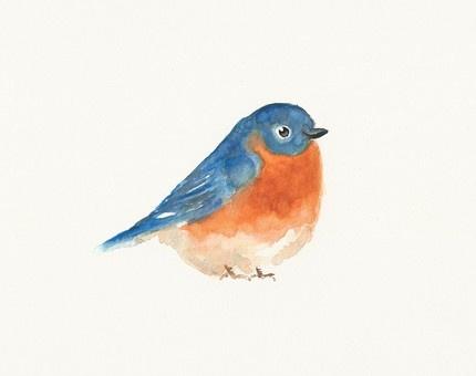 Bluebird Original watercolor painting