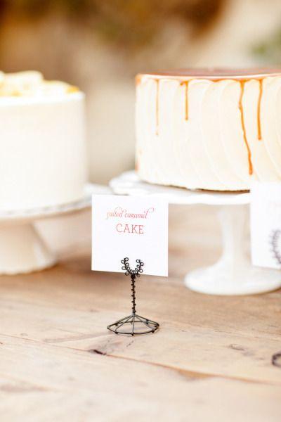 a cake smorgasbord by www.thescootabake...  Photography by Ashlee Raubach / ashleeraubach.com, Wedding Planning and Design by Nicole Davis Design / meohmy.blogspot.com