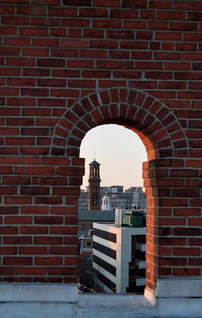 St. Paul's bell tower in the distance in Harvard Square. DiscoverHarvardSq....