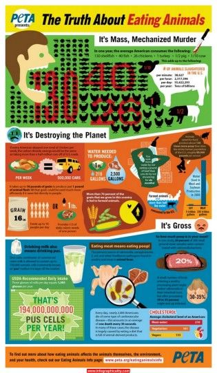 The Truth About Eating Meat #food #health #nutrition