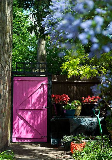 a garden with a dark fence and bright colourful gate.