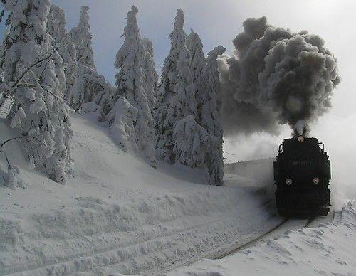 train trip through the Canadian Rockie Mountains