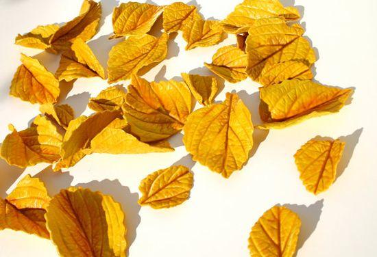 Edible Golden Aspen Leaves 2 Dozen Sugar by andiespecialtysweets, $60.00