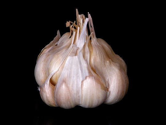 How to peel a head of garlic in 10 seconds....that's amazing!! Never thought of doing this!