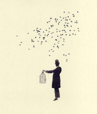 Birds #birds #drawing