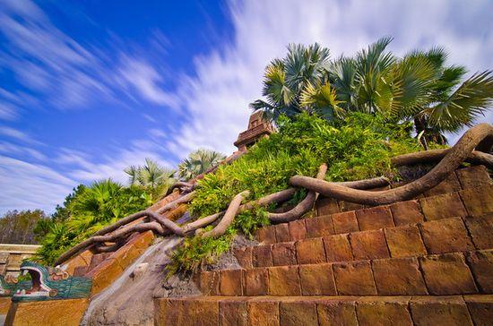 Value Resorts v. Moderate Resorts at Disney World - Disney Tourist Blog