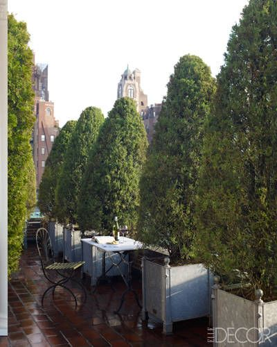 Interior Designer Stephen Sills Designs a Manhattan Home - ELLE DECOR