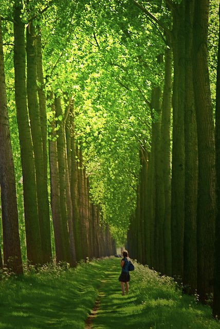 Bruges in May, Belgium
