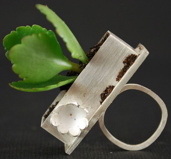 Wearable garden. ... Kathryn Cole jewelry #jewelry #ring #grow #sterling_silver #metal #organic #green #botanical #kathryncole