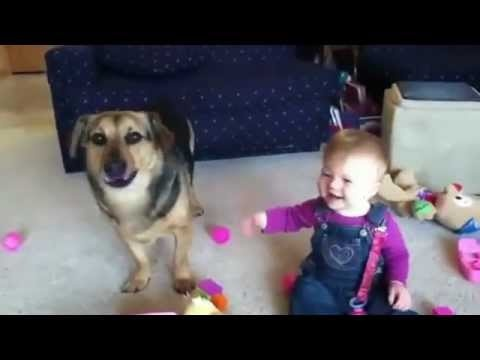 Laughing Baby & Funny Dog -- FUNNY VIDEO CLIP